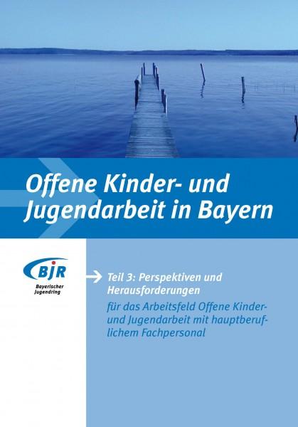 Offene Jugendarbeit in Bayern, Teil 3: Perspektiven und Herausforderungen